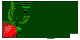 viveroscarbonero Logo